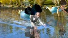 Tinkerbell Wasserfee